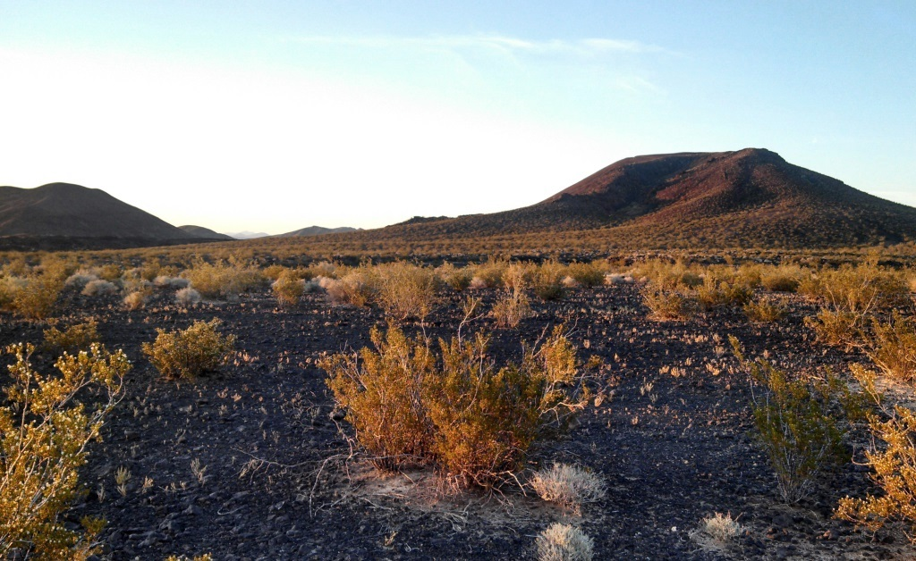 The landspace was awesome.  Full of harsh black rocks and scrubby desert plants. Very surreal.