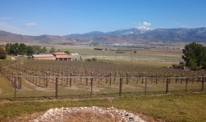 Everyone starts a trip to Mojave at a winery:) This is a favorite of ours in Tehachapi called Souza
