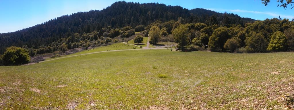 """Some really pretty alpine meadow like areas on the hike.  this one is called """"The Meadows'"""
