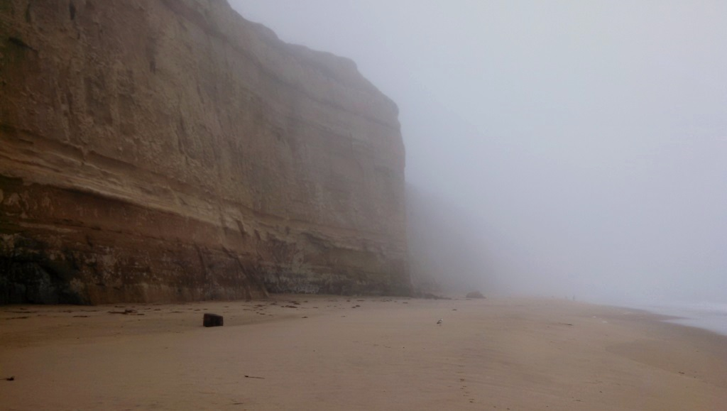 The beach was foggy and cliffy and awesome.