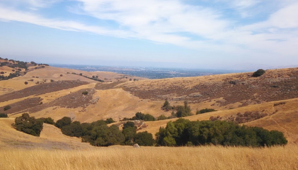 And as always you can see San Jose from any local high point, this time Coyote Peak.