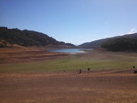 The view of Uvas Reservoir from the parking lot. It was a bot longer walk than usual to the water.