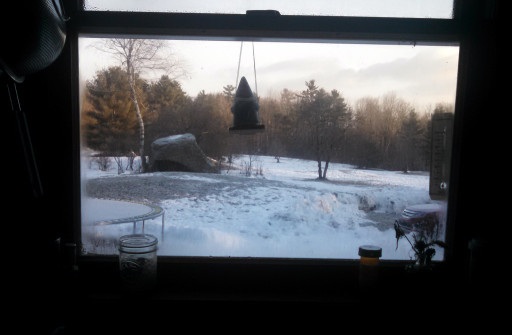 The view out of the kitchen window. Sometimes the Northeast feels this way. PS don't ask about the gnomes.