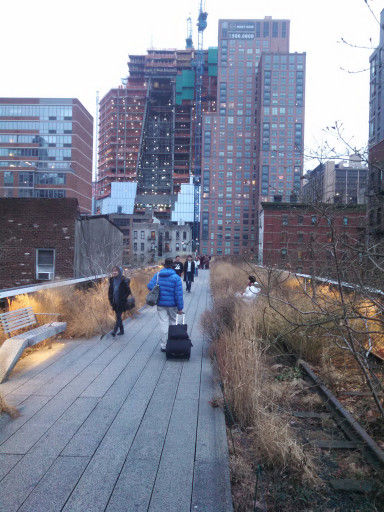 We went on the Highline for a while and it was pretty nice. I love the repurchased industrial space as park concept.