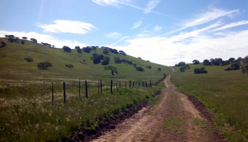 A standard trail for the park, a pretty wide path through rolling green hills.