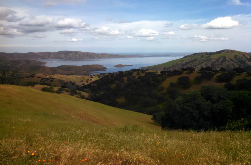 There is one large body of water in the park, the San Luis Reservoir. No trails by the lake, which is sad, but you get good view of the lake from the hills.
