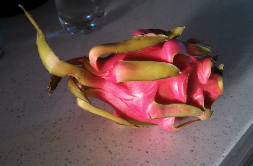 Exterior of the dragon fruit