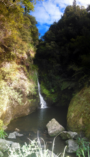 Karamatura waterfalls. We are 100% coming back on some random day and swimming in the pond at the base of the waterfall. This is probably the prettiest place I have been to yet in NZ.