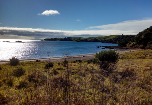 And the northern bays of Motutapu. I would like to be here in the summer for some swimming and oceanside camping, if it were allowed.