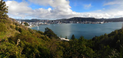 And a view back onto the city from a pleasant hike on the southern walkway towards Mt. Victoria.