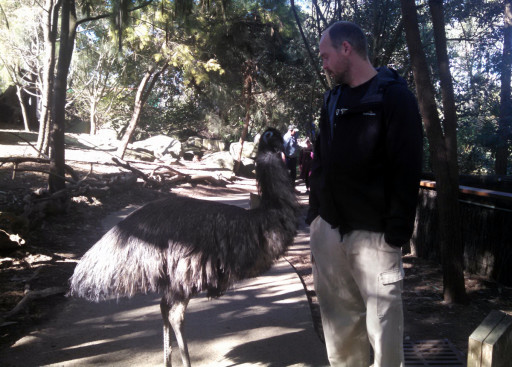The emu was vveerrryyyy friendly.