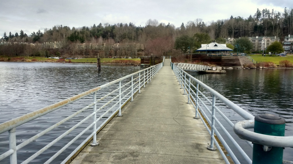 Surprisingly pretty dock walk