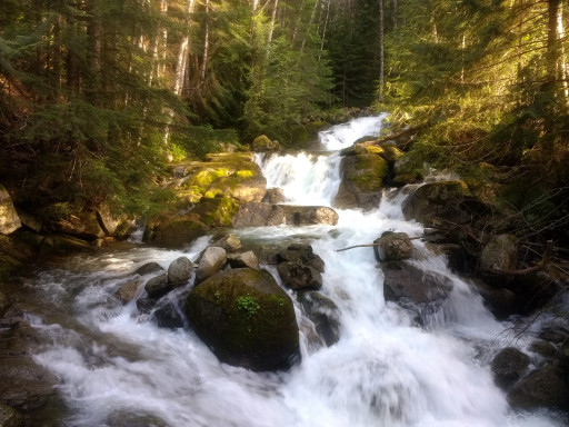 It wouldn't be a cascade hike with out some waterfalls.