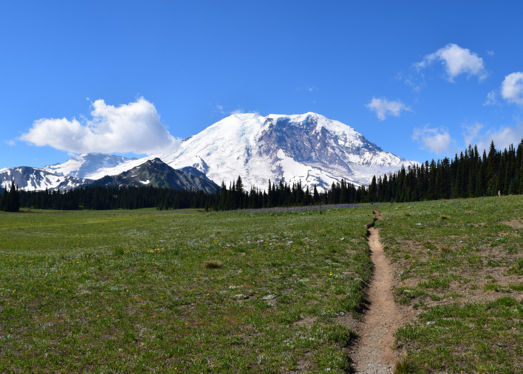The alpine meadow was one of the coolest places to walk around, just for the views.