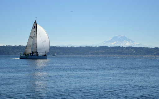 We got to see a bit of a sail boat race in the sound. This guy was well in the lead.