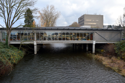 This bridge is a library! I would put King Country up for best library system.