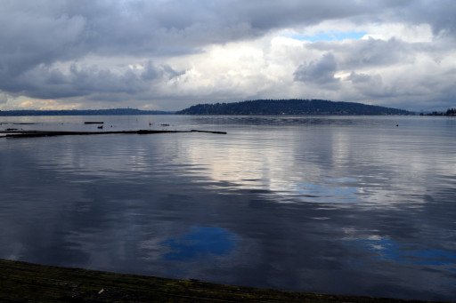 And finally Lake Washington with that damn interloper Mercer Island.