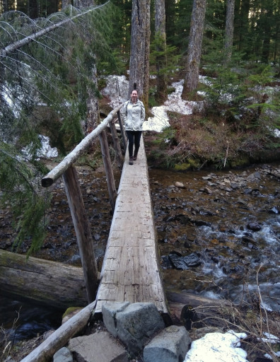 The hike started as it should - a log bridge over a cascading creek.