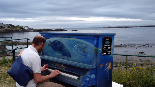 They have pianos distributed all over Victoria. I like to think the seals enjoy it.