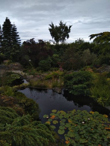 A water feature is key for Pacific Northwest gardens.